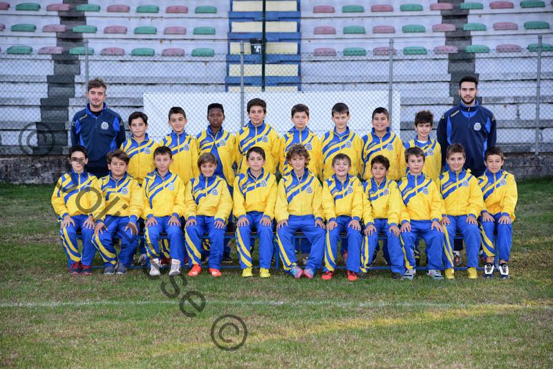 pulcini20051